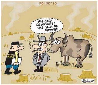 BLOGUE CONSUMO CONSCIENTE gado-e-desmatamento